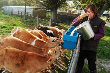 I'm also a dairy farmer! This was my favorite activity