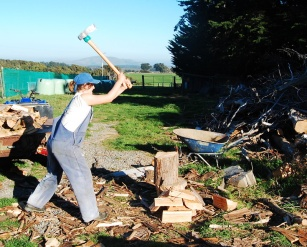 I love chopping firewood now! SO FUN