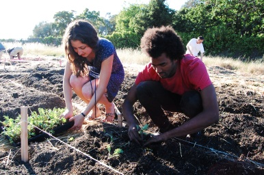 Planting kale with Yassi and her really cute friend :P