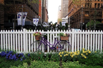 Biking and Gardening