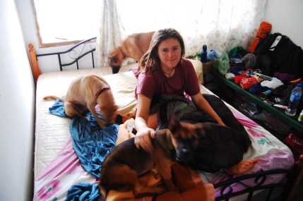 Waking up to the dogs while couchsurfing in Malaysia