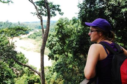 Oldest rainforest in the world in Taman Tegara, Malaysia