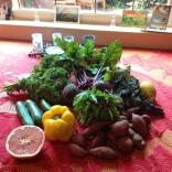 Yummy farmers market produce